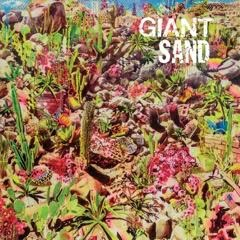 Giant Sand - Returns To Valley of Rain