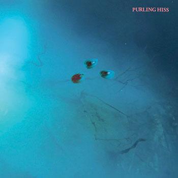 Purling Hiss - High Bias