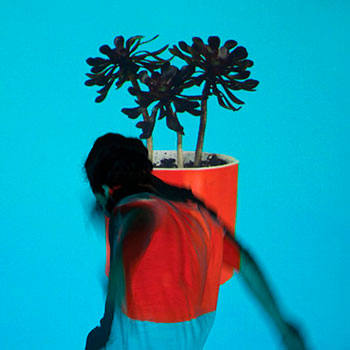 Local Natives - Sunlit Youth