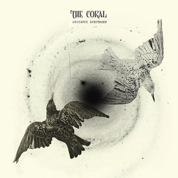 The Coral - Distance in Between