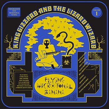 King Gizzard and The Lizard Wizard - Flying Microtonal Banana