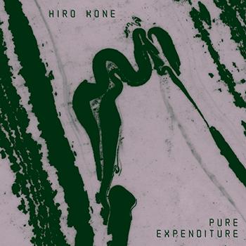 Hiro Kone - Pure Expenditure